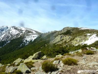 Guadarrama;Pico de la Najarra-cabra fotos mochilas montaña clubs madrid